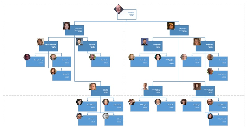Microsoft Visio 2013 : Adding photos and changing styles in org ...